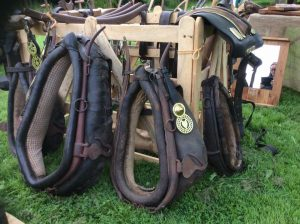 harness-open-day